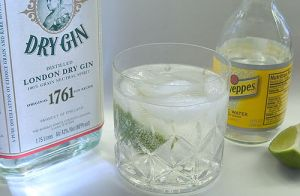 Gin_and_tonic_with_Bombay_Gin,_lime_and_Schweppes_tonic_water